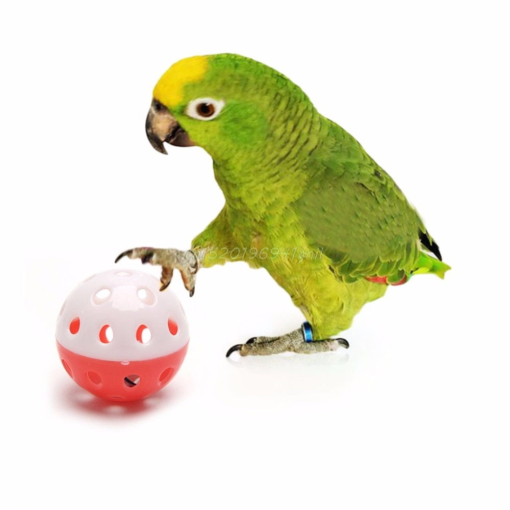 Pet-Parrot-Toy-Bird-Hollow-Bell-Ball-For-Parakeet-Cockatiel-Chew-Fun-Cage-Toys-T025-