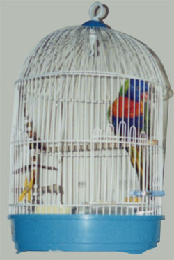cage4