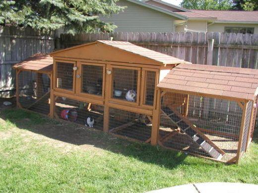 rabbit-cage-plans
